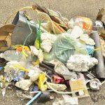 typical shoreline trash