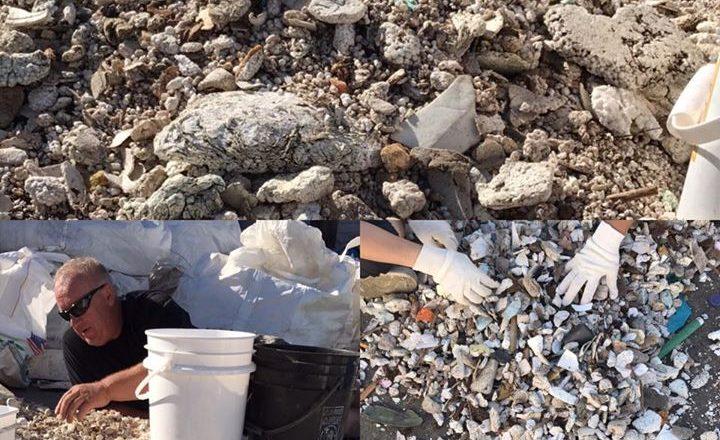 Sorting marine debris....