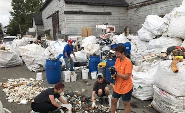 Sorting marine debris.....