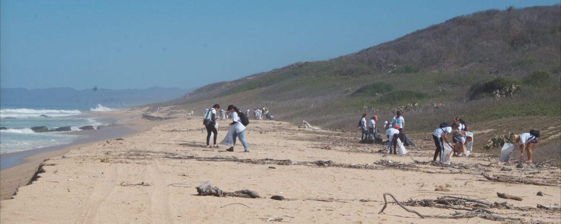 Via Del Mar 2019 cleanup