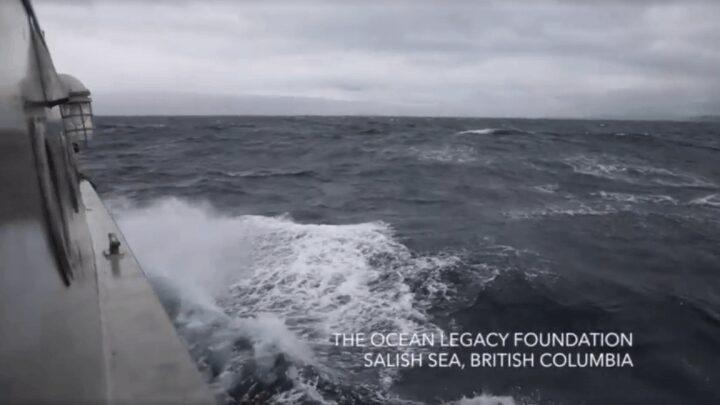 oceanlegacy-video-e1506734941242