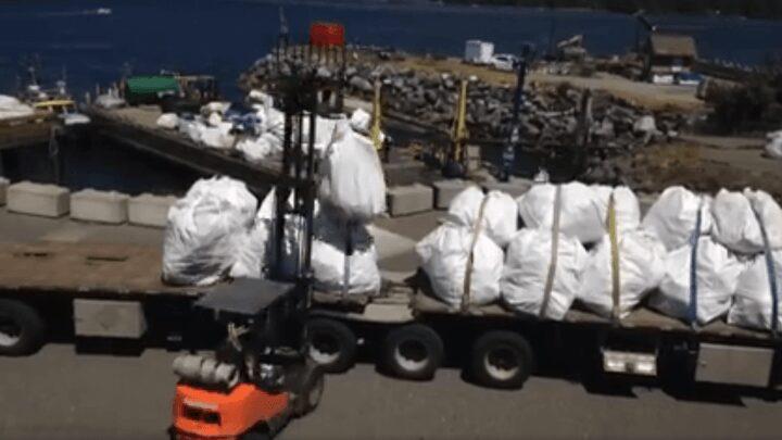 truckload_marinedebris