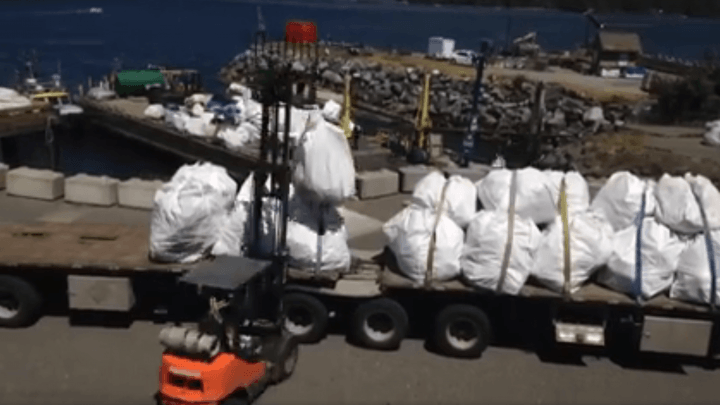 truckload_marinedebris