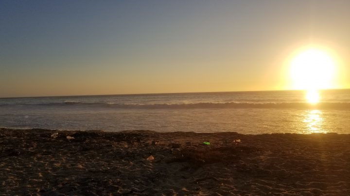 mayto beach cleanup 2019