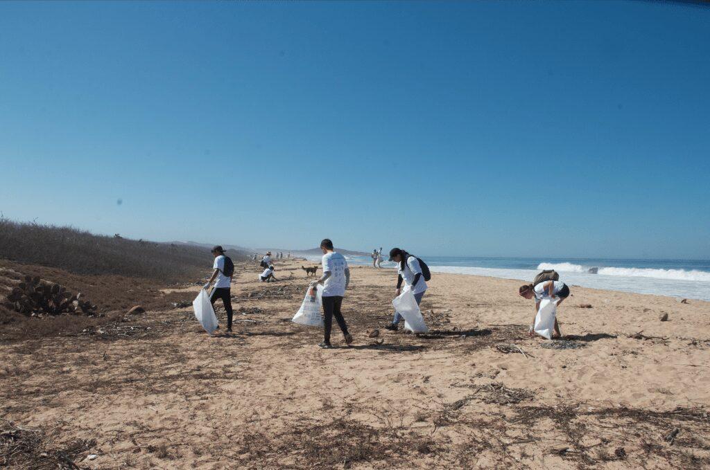 Mayto beach clean 2019