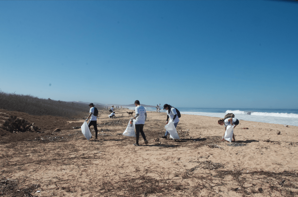 Mayto beach clean 2019