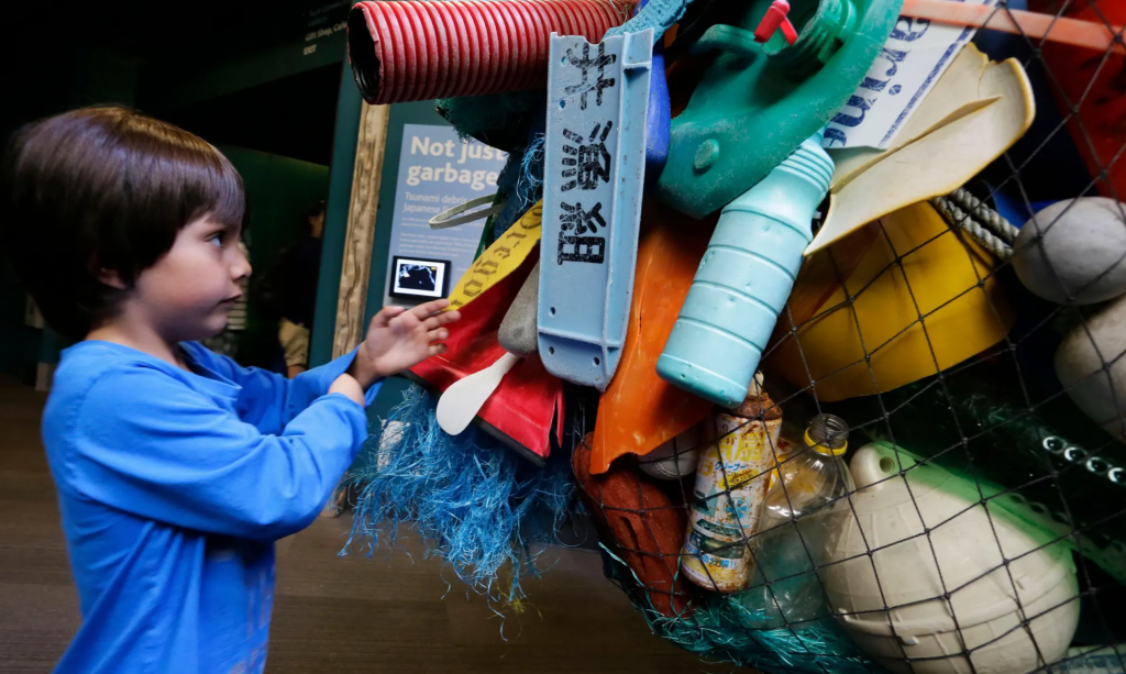 tsunami debris on display